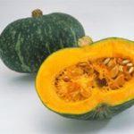 9月21日(木) 人気の宅配弁当ベジファーストの南瓜の胡麻コロッケ弁当