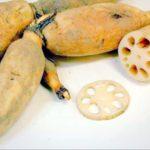 名古屋で人気の宅配弁当 ベジファースト 9月15日(金)の歯ごたえコリコリ蓮根の挟み揚げ弁当