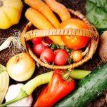 人気の宅配弁当! ベジファーストの野菜たっぷりヘルシー弁当 9月第2週のメニュー
